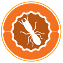 Termite Control Asheville, NC